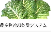 農産物冷風乾燥システム